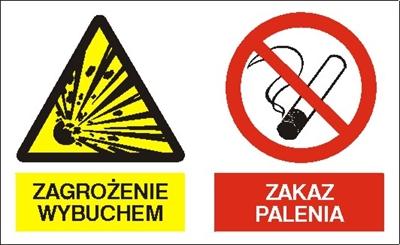 Znak Zagrożenie wybuchem. Zakaz palenia (221-10)