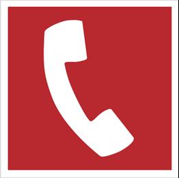 Obrazek dla kategorii Znak Telefon do użycia w stanie zagrożenia (205)