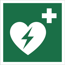 Obrazek dla kategorii Znak Defibrylator (AED) (E10)