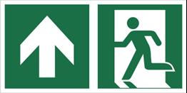 Obrazek dla kategorii Znak łączony wyjście ewakuacyjne ze strzałką w górę (E01-0GG)