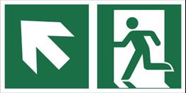 Obrazek dla kategorii Znak łączony wyjście ewakuacyjne ze strzałką po skosie (lewy górny róg) (E01-0LG)