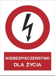 Obrazek dla kategorii Znak Niebezpieczeństwo dla życia (630-01)