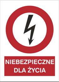 Obrazek dla kategorii Znak Niebezpieczne dla życia (630-09)