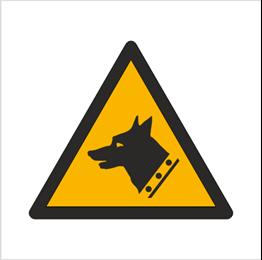 Obrazek dla kategorii Znak Ostrzeżenie przed złym psem (W13)
