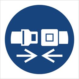 Obrazek dla kategorii Znak Nakaz stosowania pasów bezpieczeństwa (M20)