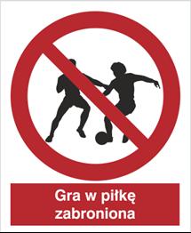 Obrazek dla kategorii Znak Zakaz gry w piłkę (600)