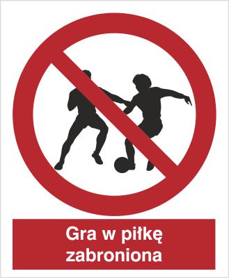 Znak Zakaz gry w piłkę (600)