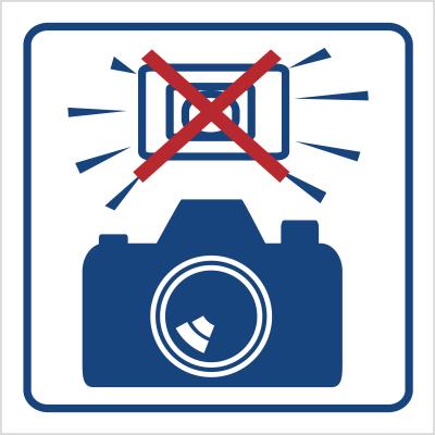 Zakaz używania lamp błyskowych (823-80)