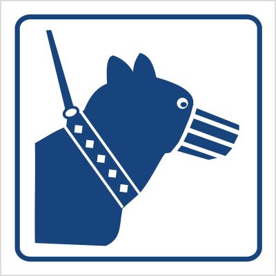 Psy wprowadzać tylko na smyczy i w kagańcu (823-91)