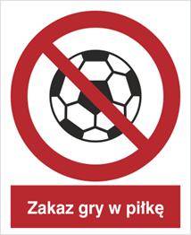 Obrazek dla kategorii Znak Zakaz gry w piłkę (651)