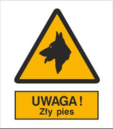 Obrazek dla kategorii Znak Uwaga! Zły pies (309)