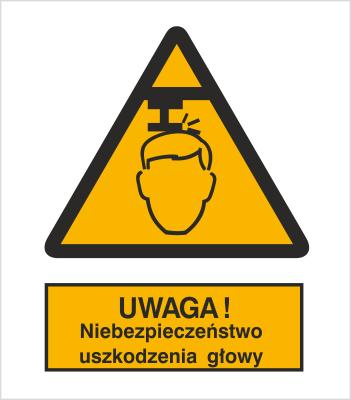Znak Ostrzeżenie przed niebezpieczeństwem uszkodzenia głowy (311)