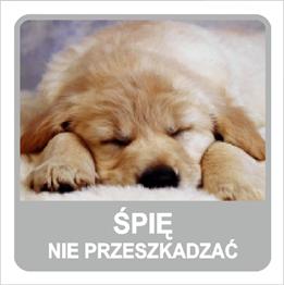 Obrazek dla kategorii Śpię nie przeszkadzać (823-167)