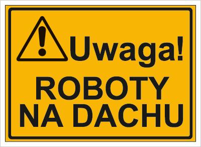 Uwaga! Roboty na dachu (319-02)