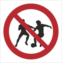 Obrazek dla kategorii Znak zakaz gry w piłkę - znak bez opisu (600)
