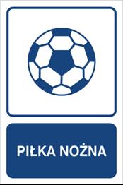 Obrazek dla kategorii Piłka nożna (823-160)